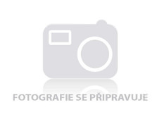 Obrázok Leifheit set podlahový mop Profi+vedro Profi s nášľapným žmýkaním bez koliesok 55077